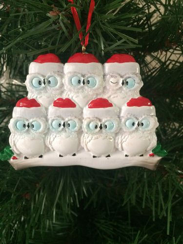 Owl Family of 7 Personalised Christmas Tree Decoration